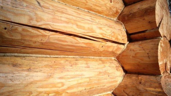 Заделка трещин в бревне – лечим дерево