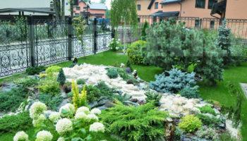 Озеленение территории возле дома и благоустройство участка – комплексный подход