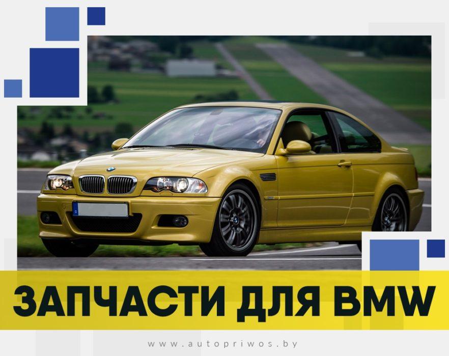 автопривоз5