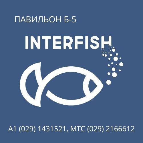 Интерфиш — Рыболовный магазин